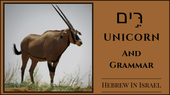 Unicorn in the bible, oryx