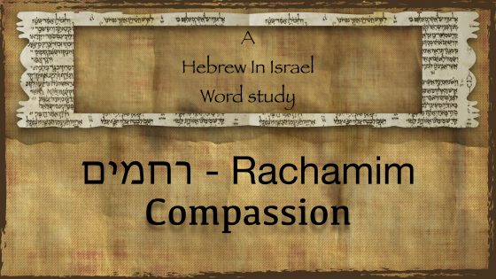 word study – Hebrew In Israel