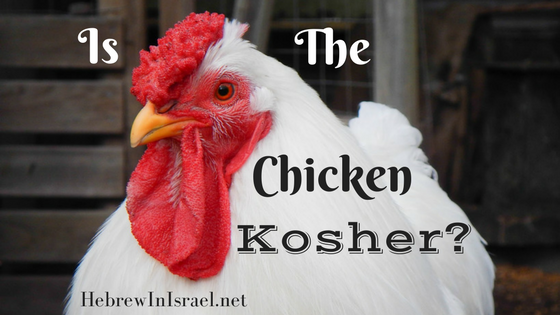 kosher, kosher diet, kosher meaning, what does kosher mean, what is kosher