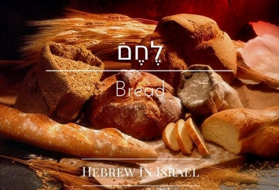 Bread in the bible,