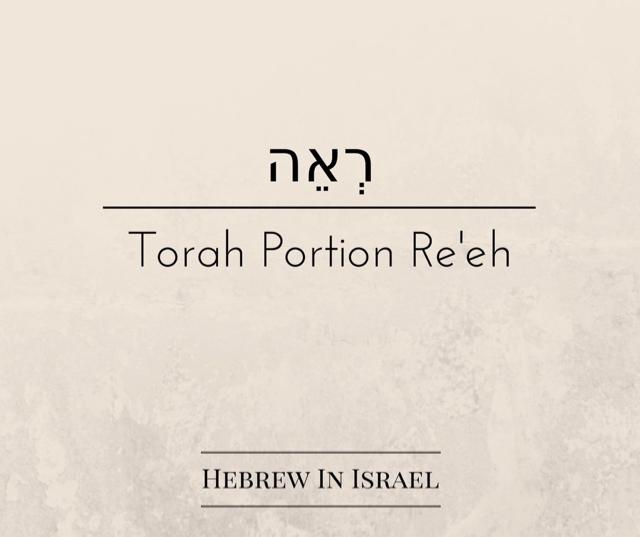 false prophets, prophet definition, who is a prophet, what is a prophecy, what is prophet, prophecy, prophet, bible prophecy, this weeks torah portion, Torah Portion,