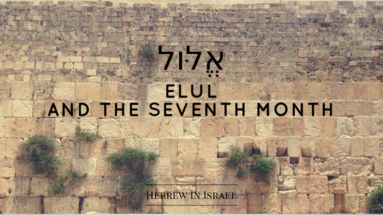 elul, high holy days, jewish calendar, jewish holidays, jewish traditions, judaism traditions, kaparot, kappaross, rosh hashanah, selichot, yom kippur