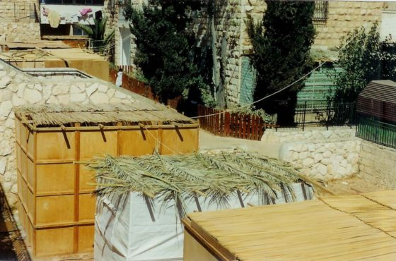sukkot, jewish holidays, feast of tabernacles, tabernacle, succah, sukkos, feast of harvest, sukkot definition, what is sukkot, festival of booths, sukka, sukkot meaning, what is a tabernacle, lulav and etrog, feast of booths,