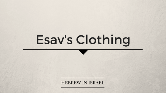 Toldot, jacob and esau, jacob clothing, esau in the bible, esau, Genesis 27,