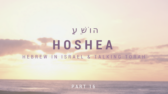 book of hosea, hosea, hosea 11, hosea and gomer, hosea bible, hosea meaning, prophet hosea