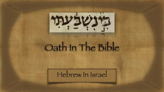 oath definition, oath meaning, oath taking, oaths in the bible, swear an oath, what is a vow, what is an oath,