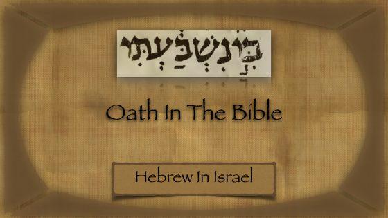 oath definition, oath meaning, oath taking, oaths in the bible, swear an oath, what is a vow, what is an oath,