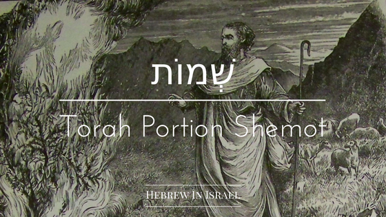 parashat shemot, this weeks torah portion, torah portion this week, torah portions, shemot, weekly torah portion