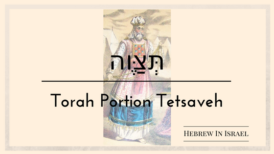 Parashat tetsaveh, tabernacle, tabernacle of moses, Tetsaveh, the tabernacle, this weeks torah portion, Torah Portion, weekly torah portion,ephod definition, ephod meaning, exodus 28, linen ephod, priestly garments, urim, vestments, what is an ephod, what is an ephod in the bible,