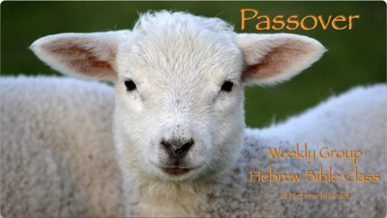 passover, passover feast, passover in the bible, pesach