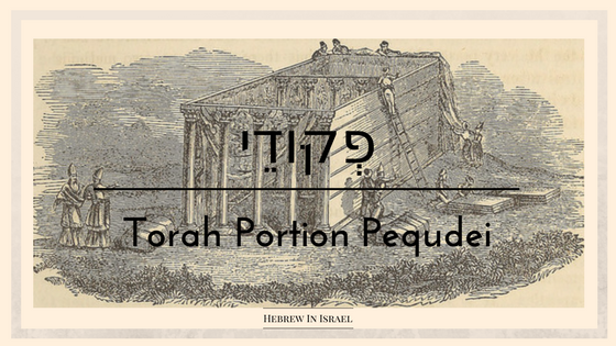 parsha this week, portion, tabernacle, tabernacle of moses, the tabernacle, the torah, this week, this weeks parsha, torah portion this week, torah portion pequdei, pekudei, weekly torah portion