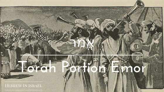 EMOR, TORAH PORTION THIS WEEK, TORAH PORTIONS, WEEKLY TORAH PORTION