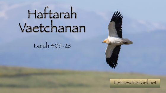 isaiah 40, on eagles wings, they that wait upon the lord, they that wait on the lord, prepare ye the way of the lord,