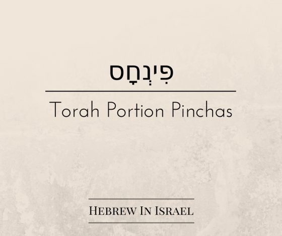 Phinehas, Pinchas, this weeks torah portion, torah portion this week