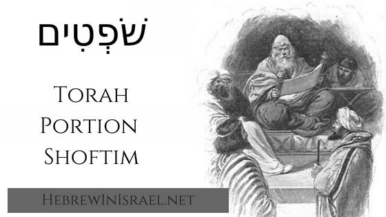this weeks torah portion, Torah Portion, weekly torah portion, Torah portion Shoftim