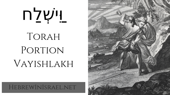 this weeks torah portion, torah portion this week, torah portions, vayishlach, vayishlakh, weekly torah portion