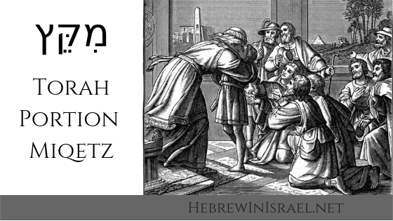 mikets, miketz, this weeks torah portion, torah portion this week, torah portions, weekly torah portion