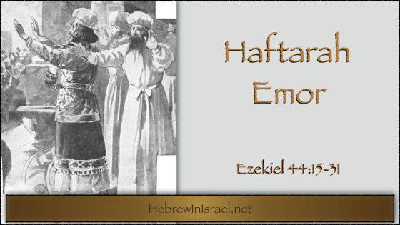 Haftarah Emor, Emor, Ezekiel 44, Kohanim, Cohanim